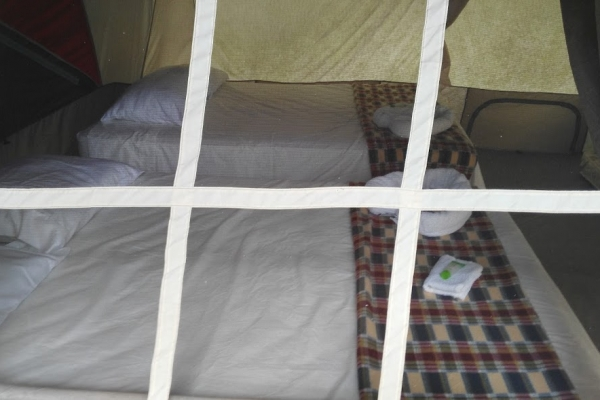 tent-343BC4BDE-AABC-D23E-0F35-D85EB2B9995D.jpg